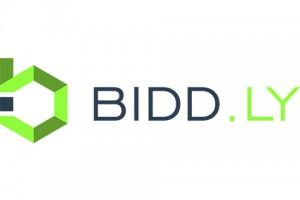 startup-biddly